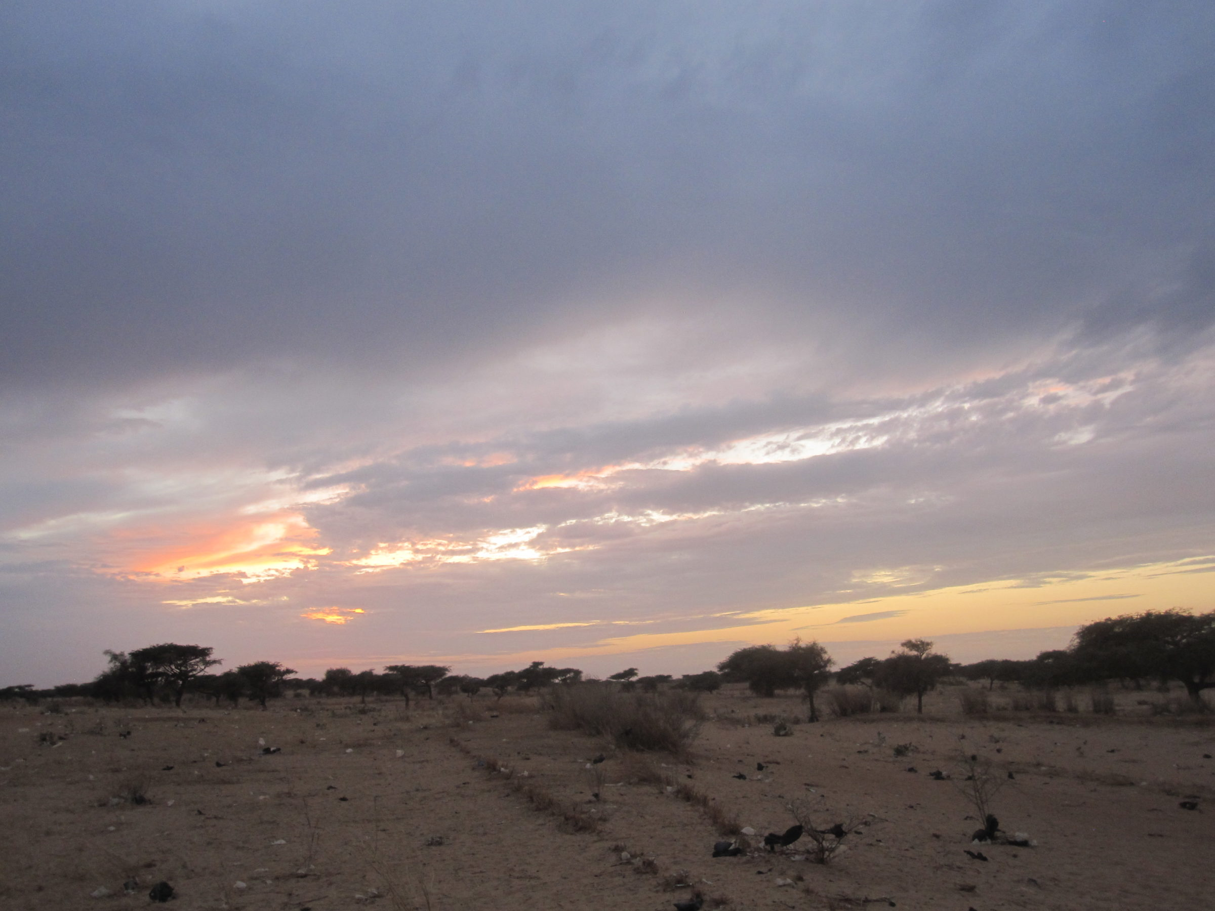 A Saturday Night in the Sahel