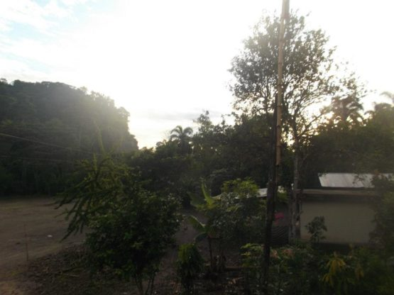View from my window