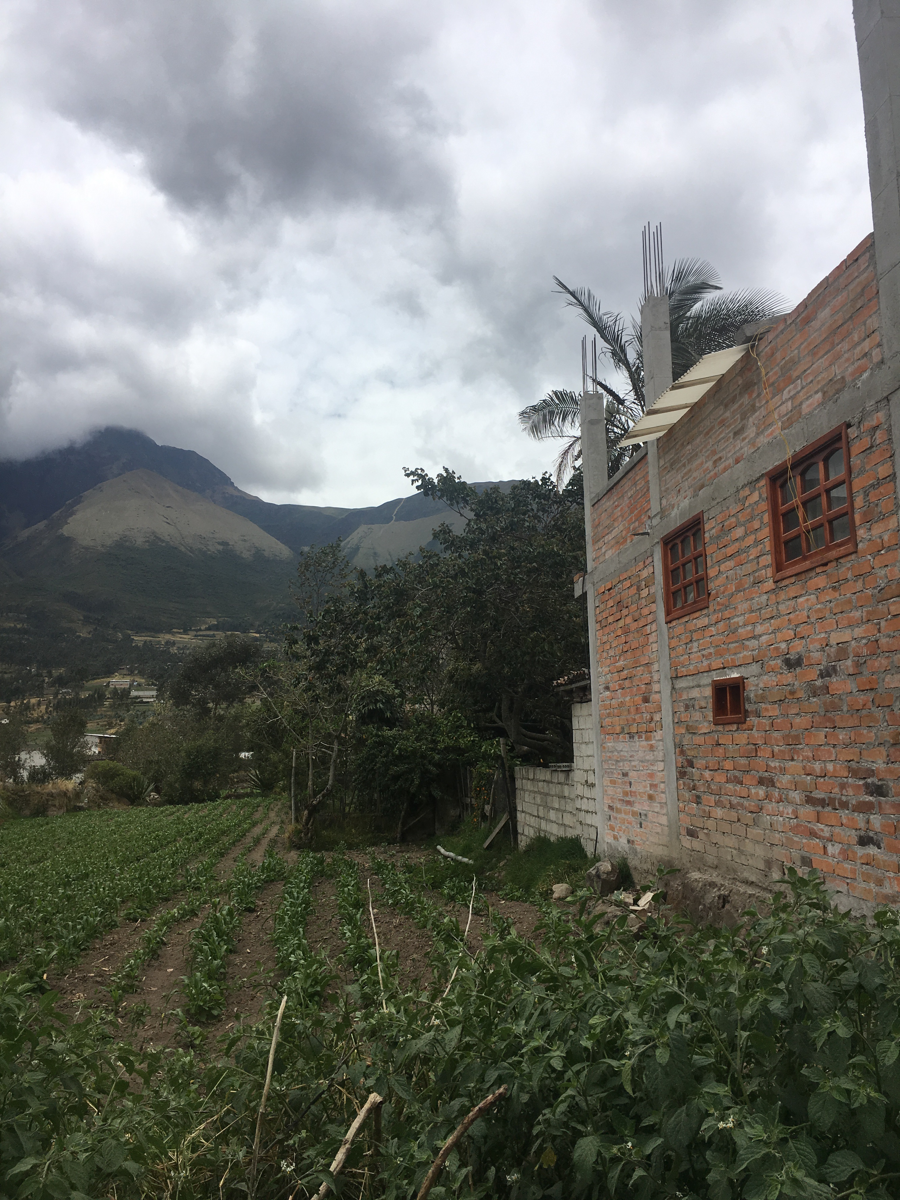 What Ecuador has Taught Me: My Collection of Experiences
